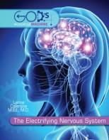 The Electrifying Nervous System - Elementary Anatomy