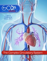 The Complex Circulatory System - Elementary Anatomy